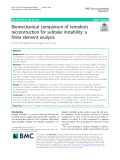 Biomechanical comparison of tenodesis reconstruction for subtalar instability: A finite element analysis
