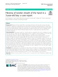 Fibroma of tendon sheath of the hand in a 3-year-old boy: A case report