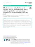 Effectiveness and cost-effectiveness of stratified blended physiotherapy in patients with non-specific low back pain: Study protocol of a cluster randomized controlled trial