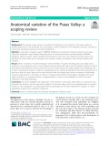 Anatomical variation of the Psoas Valley: A scoping review