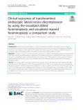 Clinical outcomes of transforaminal endoscopic lateral recess decompression by using the visualized drilled foraminoplasty and visualized reamed foraminoplasty: A comparison study