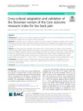 Cross-cultural adaptation and validation of the Slovenian version of the Core outcome measures index for low back pain
