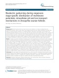 Bioelectric patterning during oogenesis: Stage-specific distribution of membrane potentials, intracellular pH and ion-transport mechanisms in Drosophila ovarian follicles