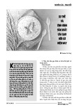 Xu thế và tình hình sản xuất lúa gạo hữu cơ hiện nay