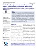 Xao Tam Phan (Paramignya trimera) methanol extract induced apoptosis in hepatocellular carcinoma HepG2 cell line in vitro