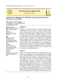 Ảnh hưởng của điều kiện xử lý đến khả năng bảo quản xoài ba màu (Mangifera indica) cắt miếng