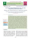 Hybrid purity testing of chilli hybrid (Pusa Jwala × Arka Lohit) through RAPD and ISSR molecular markers