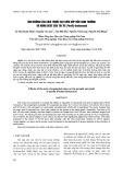 Ảnh hưởng của kích thước hạt gốm xốp đến sinh trưởng và năng suất của tía tô (Perilla frutescens)