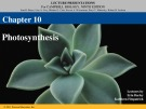 Lecture Campbell biology (9th edition) - Chapter 10: Photosynthesis