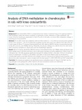 Analysis of DNA methylation in chondrocytes in rats with knee osteoarthritis