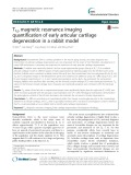 T1ρ magnetic resonance imaging quantification of early articular cartilage degeneration in a rabbit model