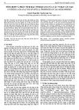 Tổng hợp và phân tích đặc tính quang của các vi hạt cầu ZnO