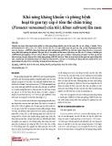 Khả năng kháng khuẩn và phòng bệnh hoại tử gan tụy cấp ở tôm thẻ chân trắng (Penaeus vannamei) của tỏi (Allum sativum) lên men