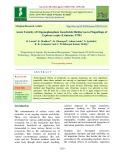 Acute toxicity of organophosphate insecticide dichlorvos to fingerlings of Cyprinus carpio (Linnaeus, 1758)