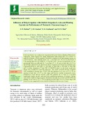Influence of drip irrigation with deficit irrigation levels and planting layouts on performance of turmeric (Curcuma longa L.)