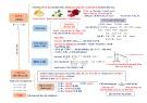 Tóm tắt lý thuyết Hóa học lớp 12