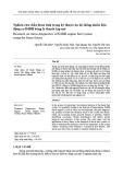 Nghiên cứu chẩn đoán tình trạng kỹ thuật của hệ thống nhiên liệu động cơ D4DB bằng lý thuyết tập mờ