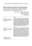 Nghiên cứu ảnh hưởng của độ dài thành cửa khuôn đến độ nhám bề mặt sản phẩm và áp lực ép khi ép chảy thanh hợp kim nhôm