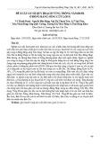 Đề xuất cơ sở quy hoạch vùng trồng nấm rơm ở đồng bằng sông Cửu Long