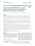 Long non-coding RNA MALAT1 protects preterm infants with bronchopulmonary dysplasia by inhibiting cell apoptosis
