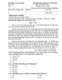 Đề thi học kì 2 môn Tiếng Việt lớp 4 năm 2019-2020 có đáp án - Trường Tiểu học Tân Bình