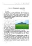 Vài nét về văn hóa Núi Cấm