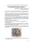 Nghiên cứu đặc điểm sinh trưởng và tích lũy chì của nghêu nuôi ở vùng triều tỉnh bến tre