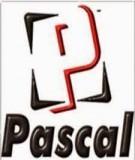 Giáo trình Lập trình cấu trúc (Pascal) - Đại học Kinh doanh và Công nghệ Hà Nội