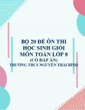 Bộ 20 đề ôn thi học sinh giỏi môn Toán lớp 8 có đáp án - Trường THCS Nguyễn Thái Bình