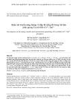 Khảo sát truyền năng lượng và dập tắt nồng độ trong vật liệu phát quang Ca2Al2SiO7:Ce3+, Sm3+