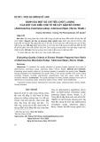 Đánh giá một số chỉ tiêu chất lượng của bột cao điều chế từ rễ cây Sâm bố chính (Abelmoschus moschatus subsp. tuberosus (Span.) Borss. Waalk.)