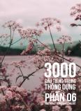 3000 câu đàm thoại tiếng Trung - Phần 6
