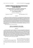 Ảnh hưởng của phương pháp hạ nhiệt đến chất lượng tinh dịch lợn bảo quản ở nhiệt độ thấp