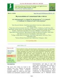Phytoremediation of contaminated soils - A review