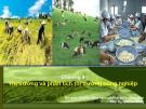 Bài giảng Kinh tế nông nghiệp: Chương 3 - ThS. Nguyễn Hà Hưng