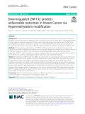 Downregulated ZNF132 predicts unfavorable outcomes in breast Cancer via Hypermethylation modification