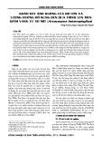Khảo sát ảnh hưởng của độ cồn và lượng đường bổ sung đến quá trình lên men giấm vang từ xơ mít (Artocarpus heterophyllus)