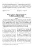 Nghiên cứu hiệu lực kháng nấm Rhizoctonia solani gây bệnh lở cổ rễ trên cây cải ngọt của vi hạt LDH cố định salicylate