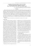 Nghiên cứu ương ấu trùng và hậu ấu trùng tôm thẻ chân trắng (Litopenaeus vannamei) bằng công nghệ biofloc với tỷ lệ C/N khác nhau