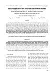 Nhận dạng giọng chữ cái tiếng Việt sử dụng deep Boltzmann machines