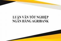 Tổng hợp 16 đề tài Luận văn tốt nghiệp ngân hàng Agribank hay nhất