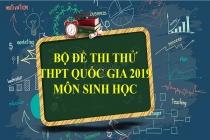 Bộ đề thi thử THPT Quốc gia 2019 môn Sinh học