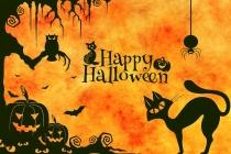 Ý tưởng trang trí Halloween độc đáo