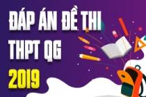 Đáp án đề thi THPT Quốc gia năm 2019