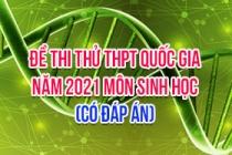 Đề thi thử THPT Quốc gia 2021 môn Sinh (Có đáp án)