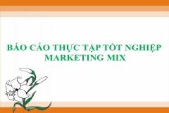 Top 11 báo cáo thực tập tốt nghiệp Marketing Mix hay nhất