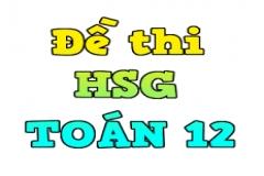 Tổng hợp 10 đề thi HSG cấp tỉnh môn Toán lớp 12