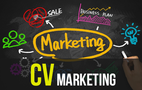 Bộ 70+ CV Marketing