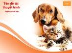 Hình nền powerpoint động vật - con chó