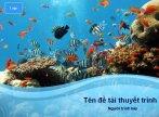 Hình nền powerpoint sinh vật biển
